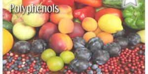 polyphenols - Dr. David Jensen